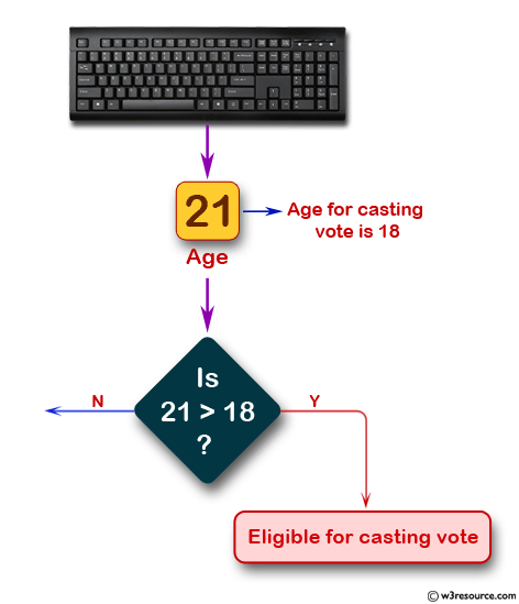 Detrermine a specific age is eligible for casting the vote