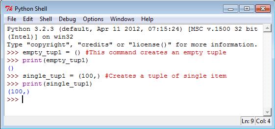 Python empty tuple