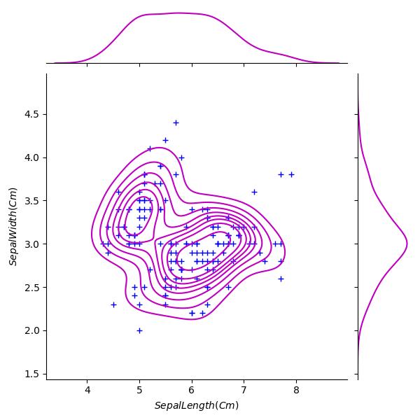 Python Machine learning Output: Iris Visualization: Exercise-12